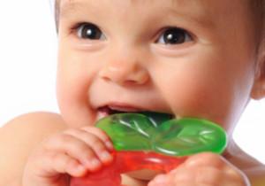 primi dentini